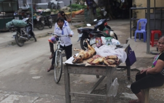 eating dog meat is part of the veitnamese culture